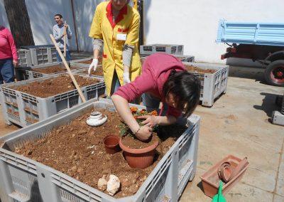 lavoro minuzioso nella terra