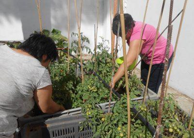 le nostre ragazze attente a controllare le piante
